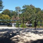 Volleyball nets at John Howell Pocket Park